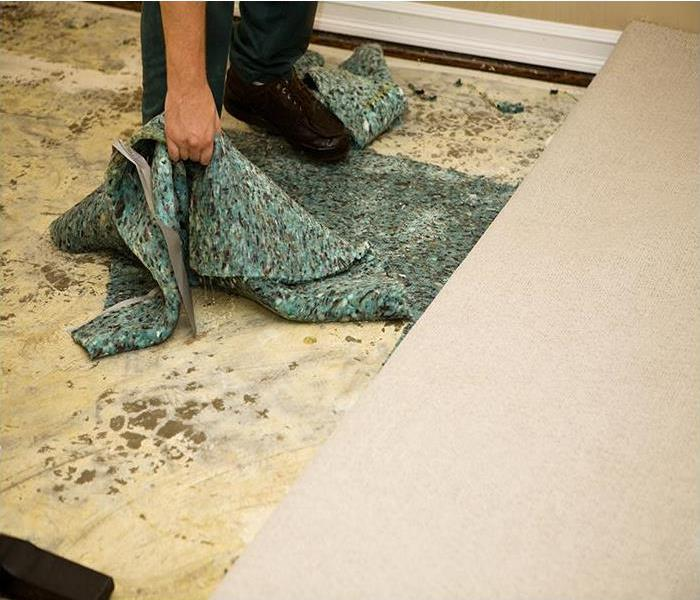 Water Damage Water Damage In Your Arlington Home Can Spell Disaster