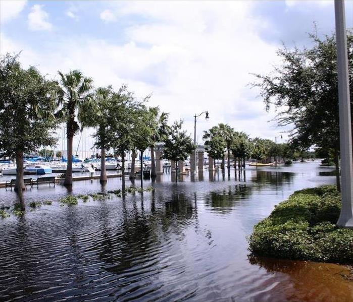 Storm Damage Make No Mistakes When You Face Flood Damage in Jacksonville