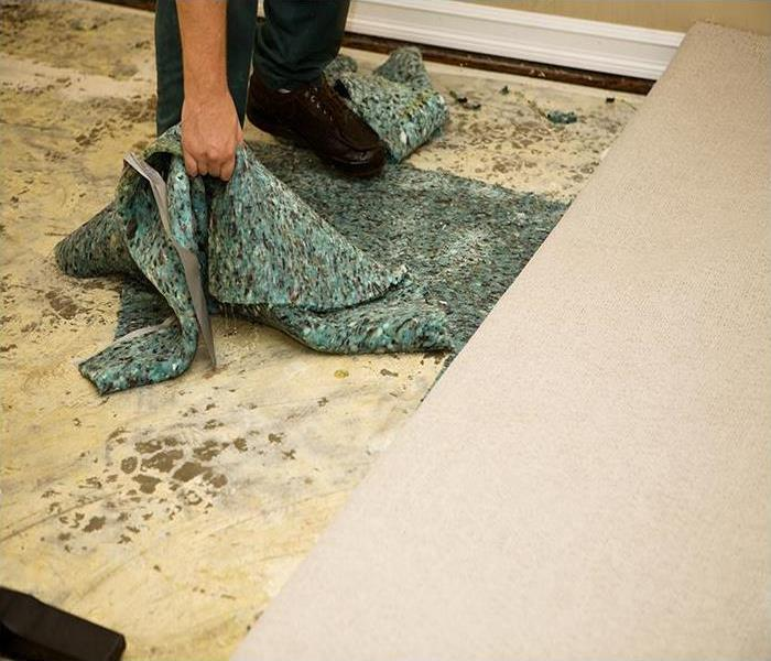 Water Damage Getting Water Damage Out Of Carpets In Jacksonville