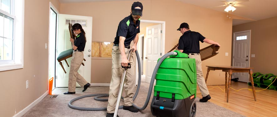 Arlington, FL cleaning services