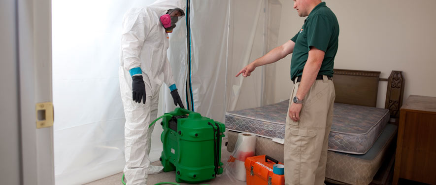 Arlington, FL mold removal process